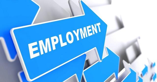 Understanding Probation In Employment