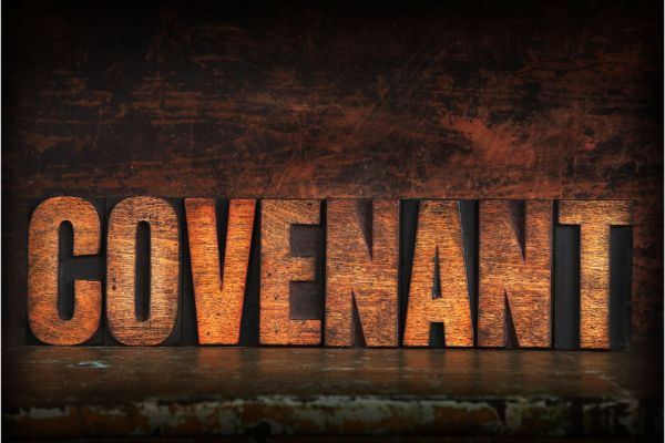 Covenants In Restraint Of Trade